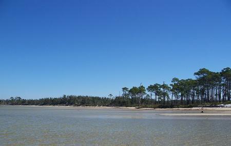 Naval Live Oaks Nature Preserve Image
