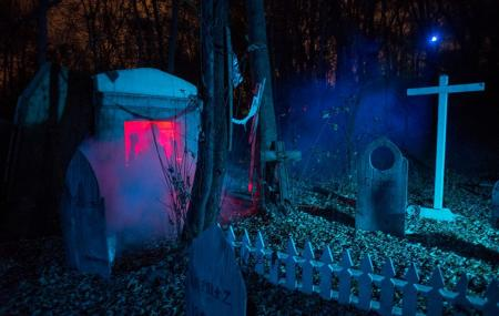 Trail Of Terror Image