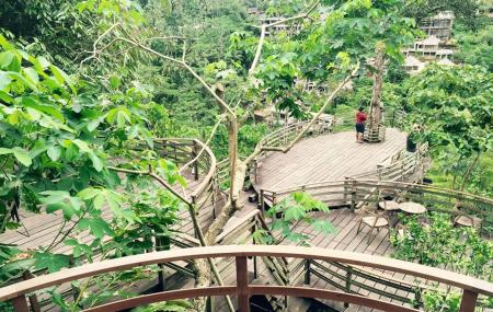 Bali Pulina Agro Tourism Bali Ticket Price Timings