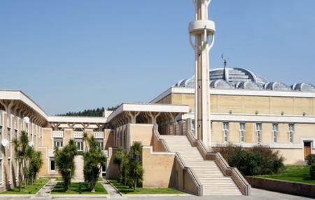 Rome Grand Mosque Image