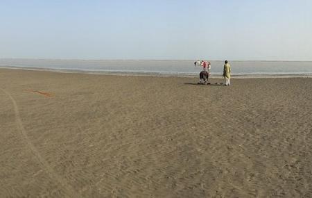 Chandipur Beach Image