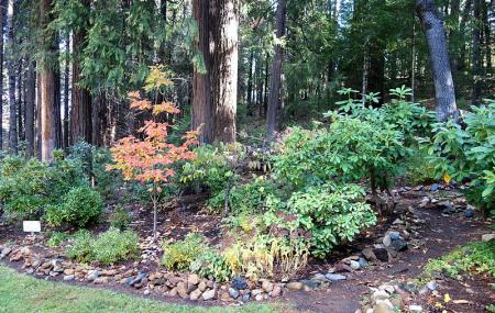 Dunsmuir Botanical Gardens Image