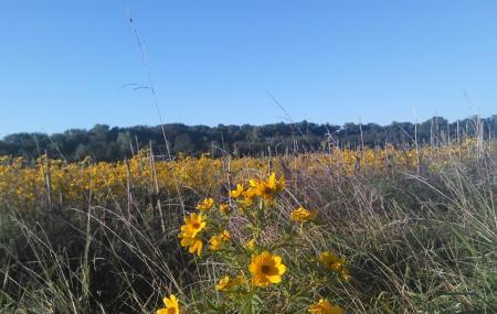 Pleasant Valley Wildlife Area Image