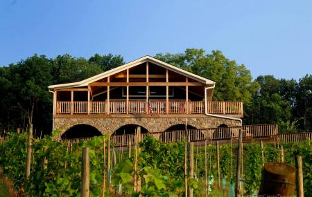 Bluemont Vineyard Image