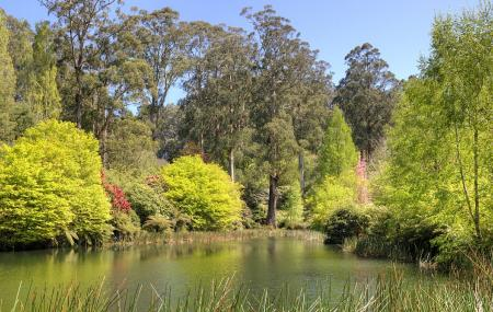 National Rhododendron Gardens Image