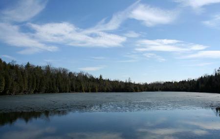 Crawford Lake Conservation Area Image