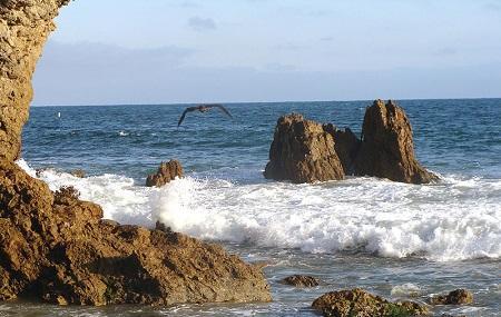 Corona Del Mar State Beach Image