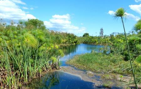 Riserva Naturale Fiume Ciane E Saline Di Siracusa Image