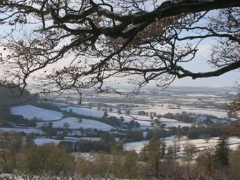 East Devon Area Of Outstanding Natural Beauty Image