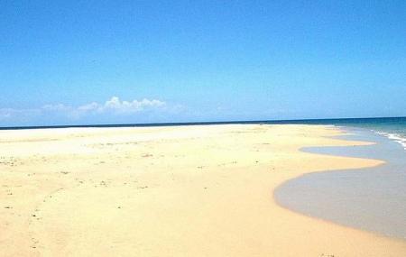 Playa De Punta Arena Image