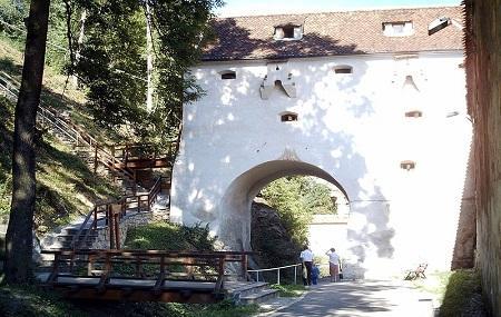 Bastionul Graft Image