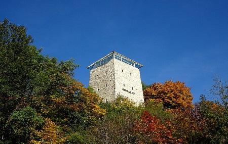 Black Tower Image