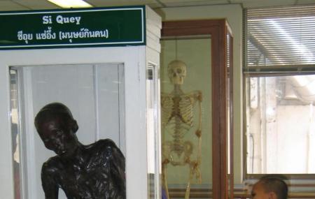 Siriraj Medical Museum Image
