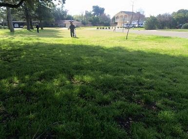University Park Image