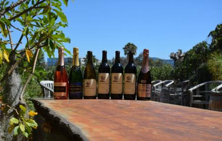 Newport Beach Vineyards And Winery Image