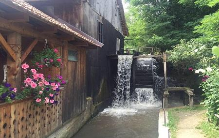 Old Mill On Water Image