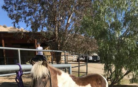 Cottonwood Canyon Ranch Image