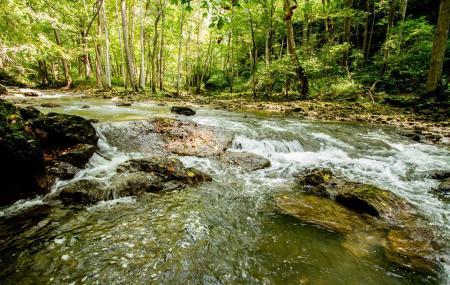 Clifton Gorge Nature Preserve Image