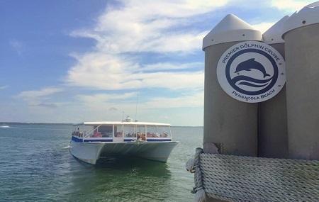 Premier Dolphin Cruises Image