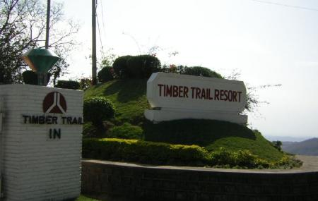 Timber Trail Image