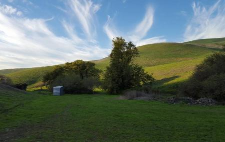 Newell Open Space Image