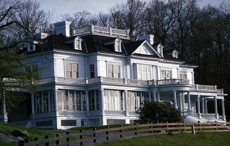 The Cone Manor Image