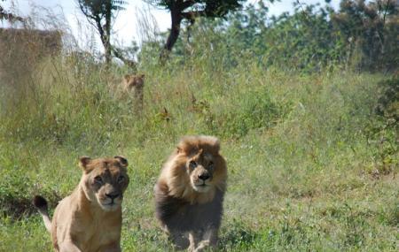 Munda Wanga Environmental Park Image