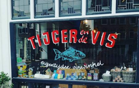 Tiger And The Fish Image