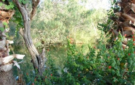 Hugh Ramsey Nature Park Image