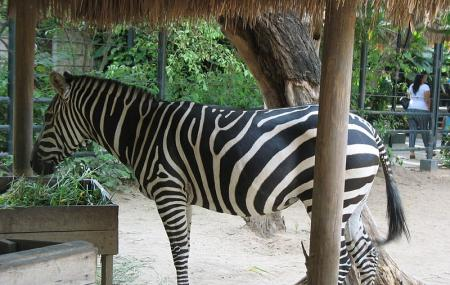 Barranquilla Zoo Image