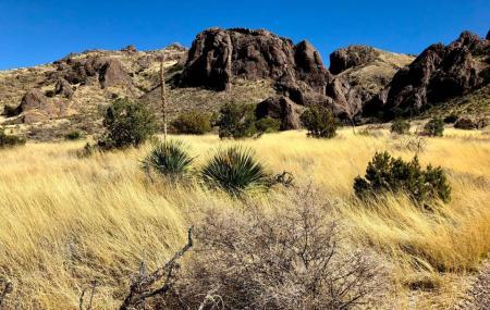 Soledad Canyon Day Use Area Image