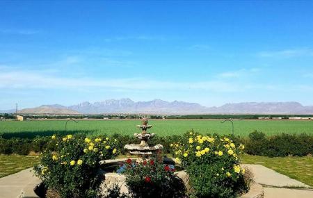 Rio Grande Vineyards And Winery Image