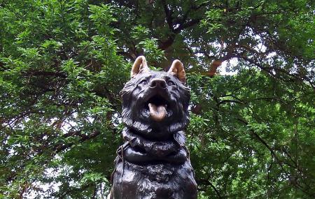 Balto Statue Image
