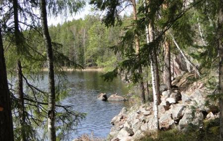 Repovesi National Park Image