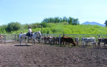 Putnam Horsemanship Image