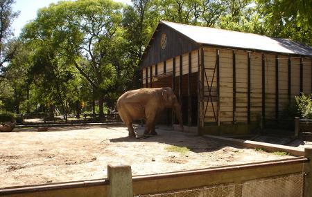 Zoo De La Plata Jardin Zoologico Y Botanico Image