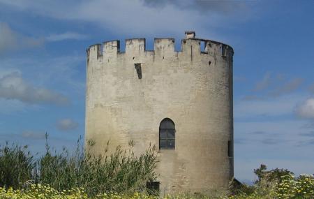 Torre Di Belloluogo Image