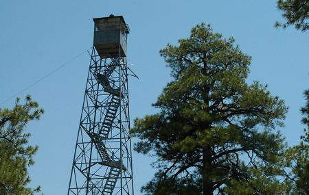 Grandview Lookout Tower Image