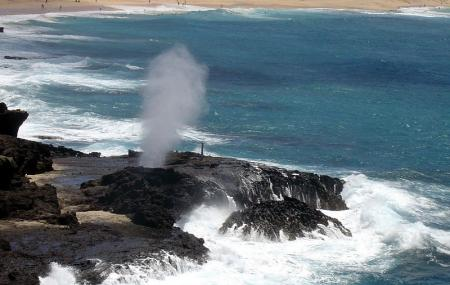 Halona Blowhole Lookout Image