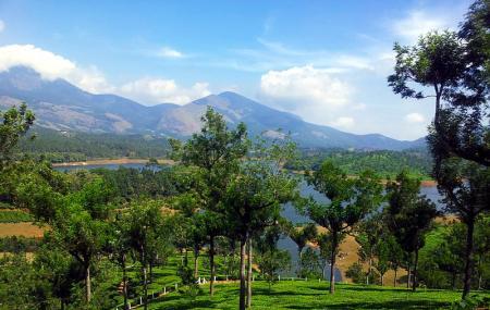 Anayirankal Dam Image