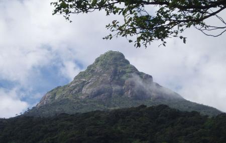 Adam's Peak Image