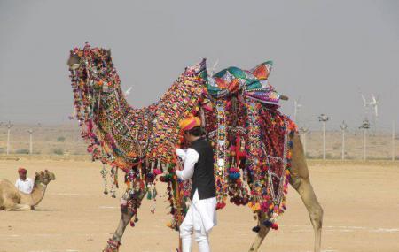 Jaisalmer Camel Safari Image