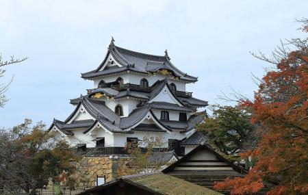 Hikone Castle (hikone) Image