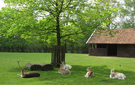 Hertenkamp Image