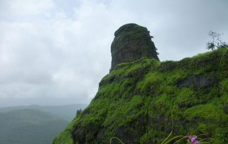 Karnala Fort Image