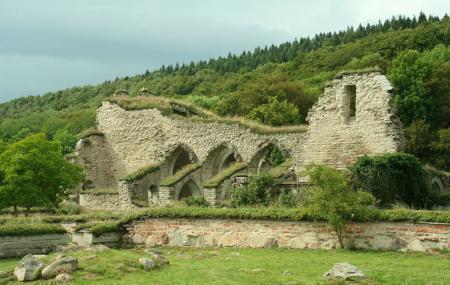 Alvastra Monastery Image