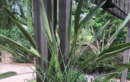 Botanica, The Wichita Gardens Image