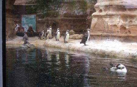 Sedgwick County Zoo Image
