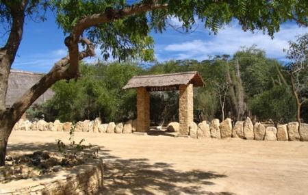 Arboretum D'antsokay Image