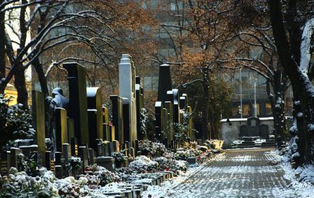 Olsany Cemetery Image